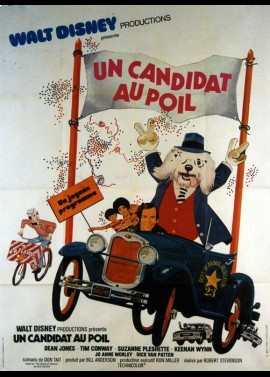 affiche du film UN CANDIDAT AU POIL