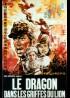 affiche du film DRAGON DANS LES GRIFFES DU LION (LE)