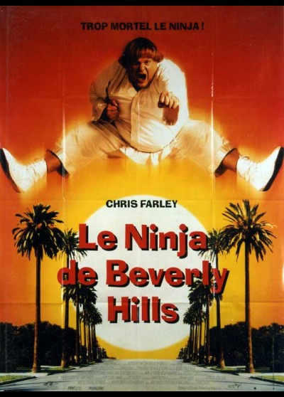 BEVERLY HILLS NINJA movie poster