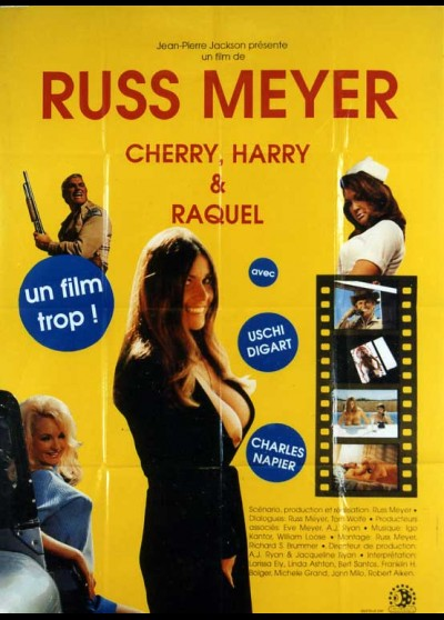 affiche du film CHERRY HARRY ET RAQUEL