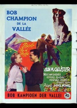 affiche du film BOB CHAMPION DE LA VALLEE