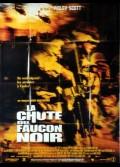 CHUTE DU FAUCON NOIR (LA)