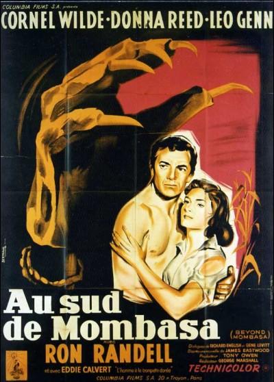 affiche du film AU SUD DE MONBASA